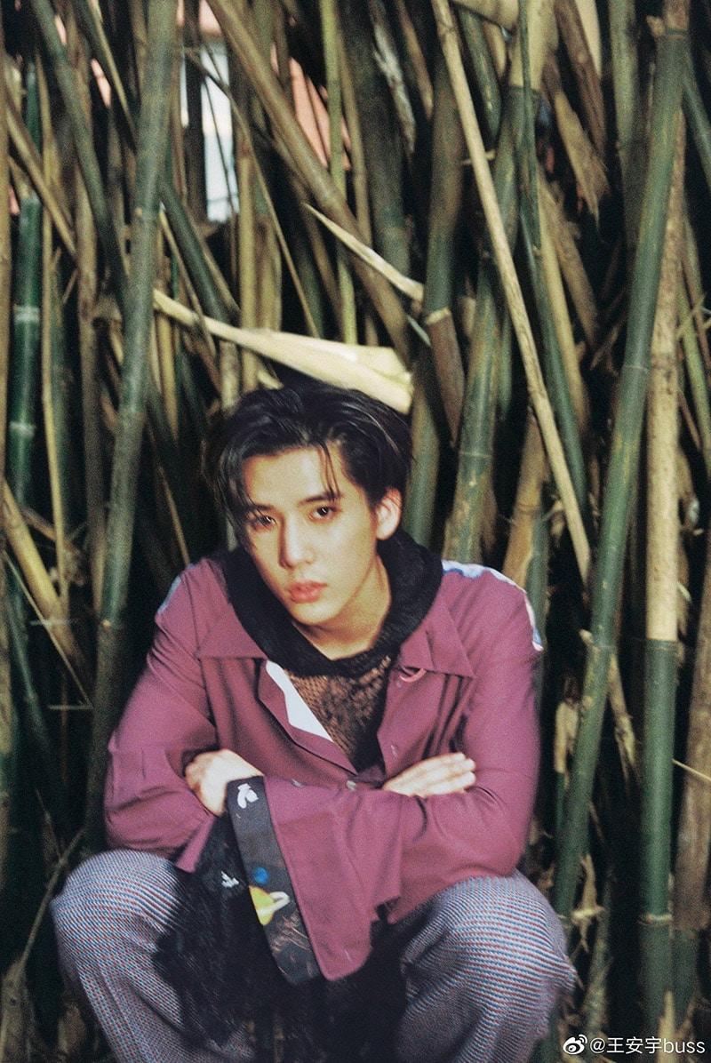 Vương An Vũ