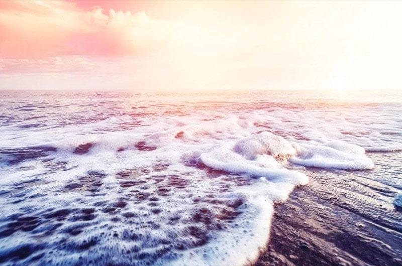 Đại dương chứa gần 200.000 loại virus khác nhau